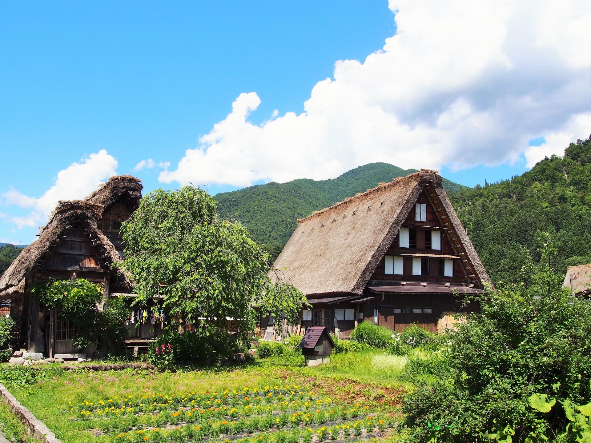 從高山出發:參觀白川村和五箇山地區。