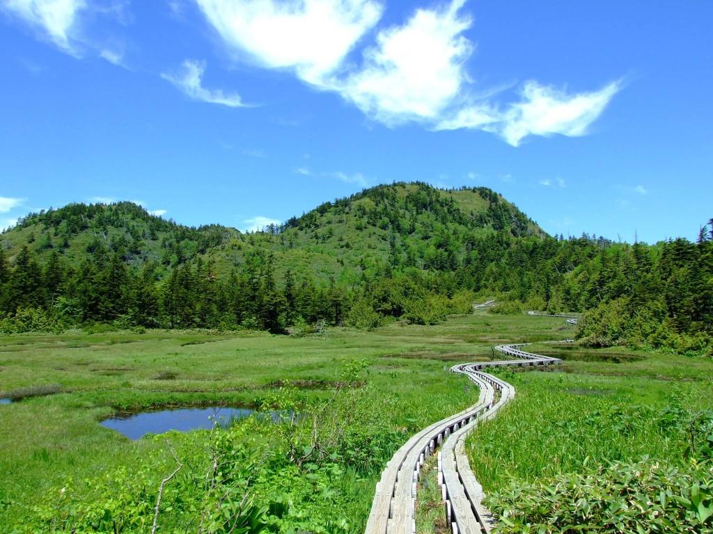Trekking Shiga-kogen Highlands