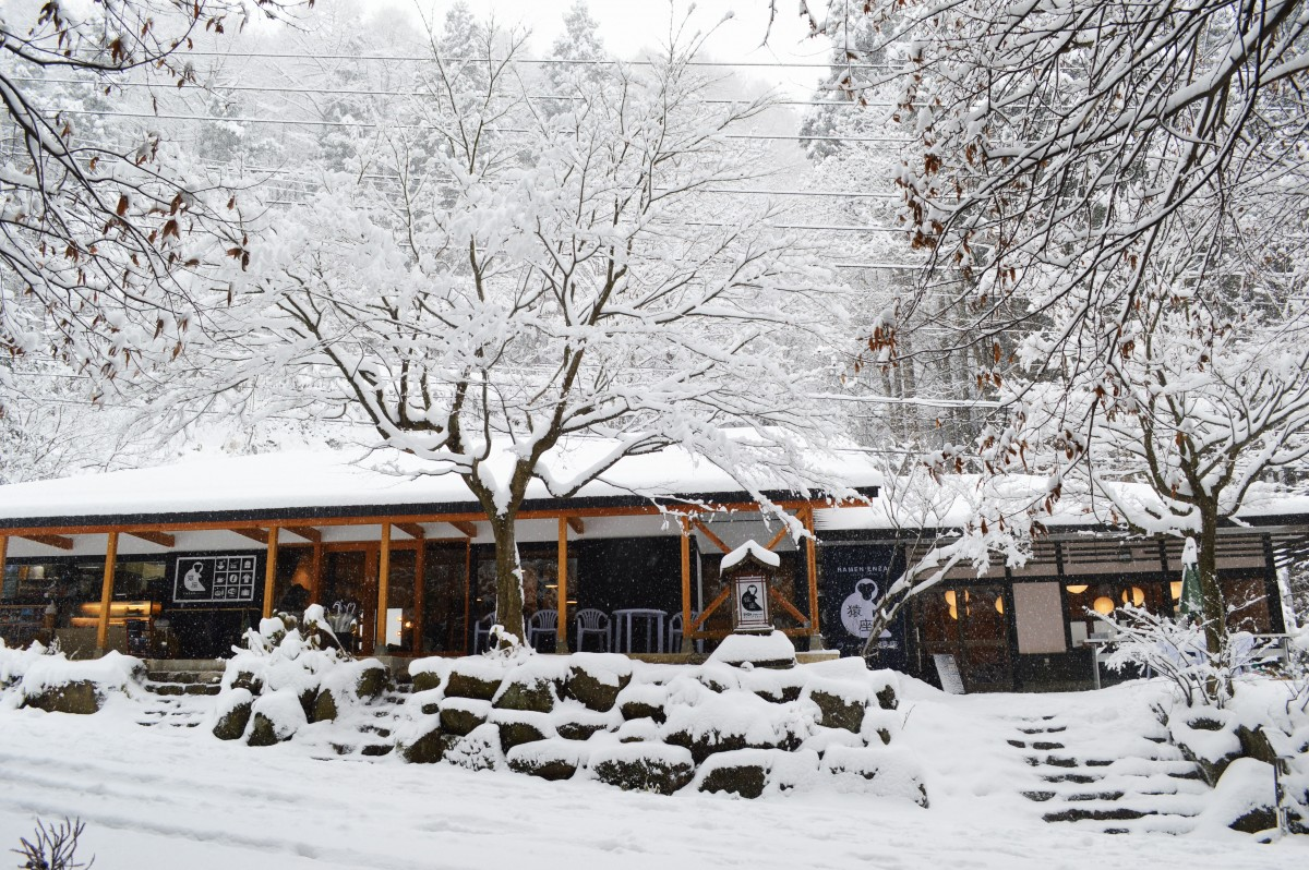 ENZA Cafe in the winter near the snow monkey park