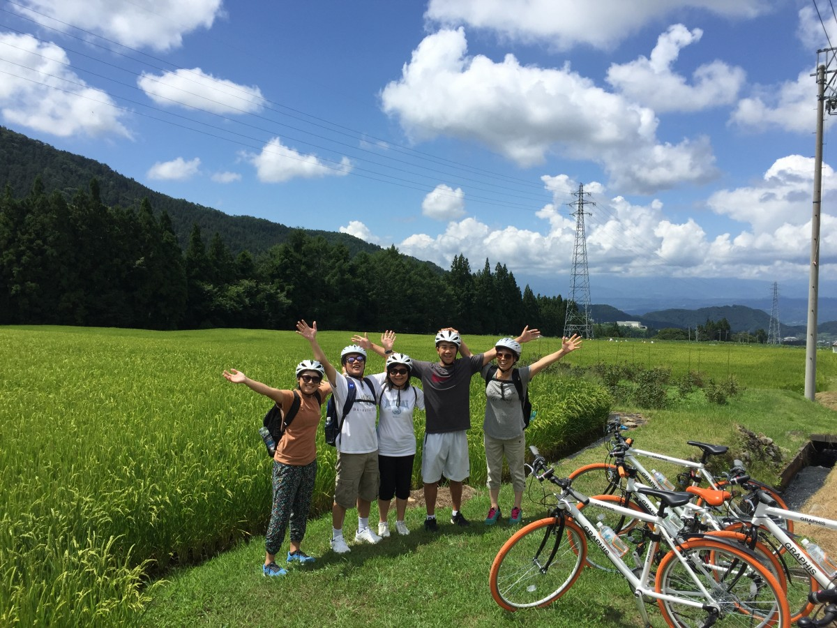 Cycling rice fields