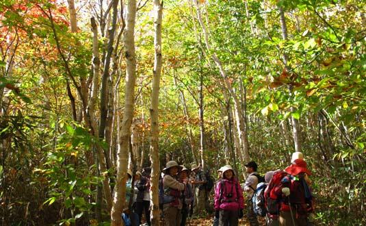 shiga hiking