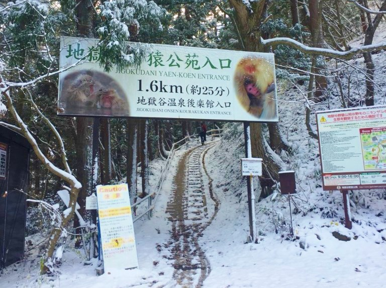 Snowy-snow-monkey-park-trail-entrance-768x1024