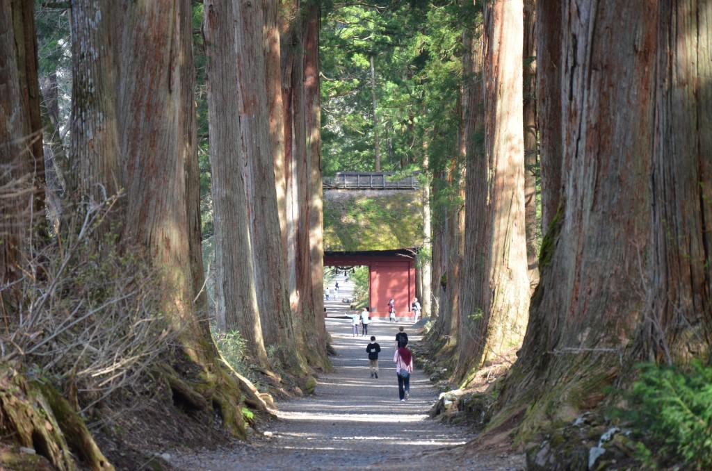Togakushi Shrine Okusha