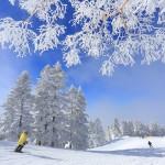 今年冬季在長野的9件事