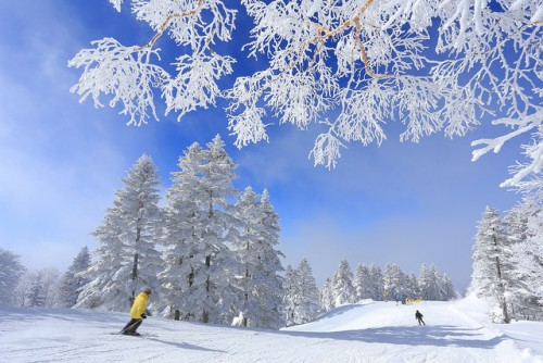 9 Things to do in Nagano this Winter