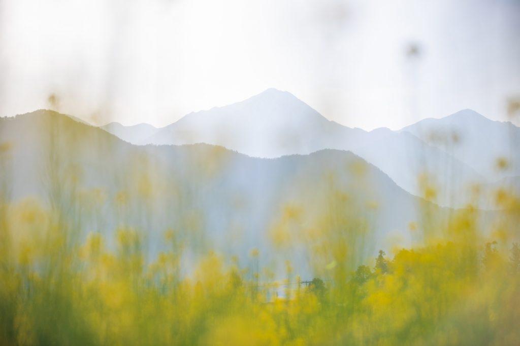 azumino-landscape