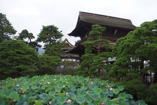 1. Zenko-ji temple gates