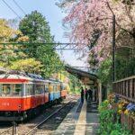 箱根的10項活動及住宿地點
