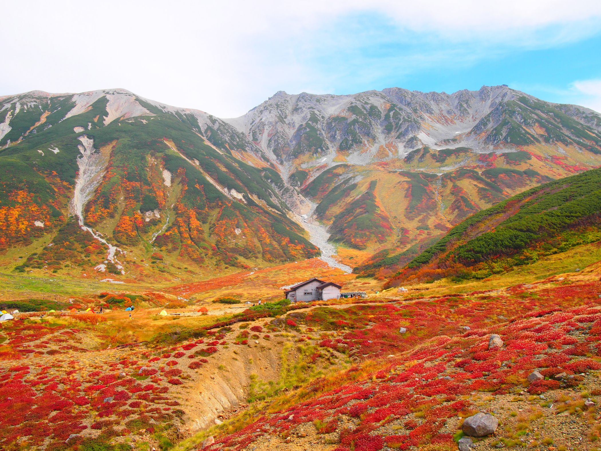 Tateyama Kurobe Alpine Route Snow Monkey Resorts