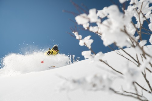 Book with Us! Accommodation & Ski Packages in Nagano