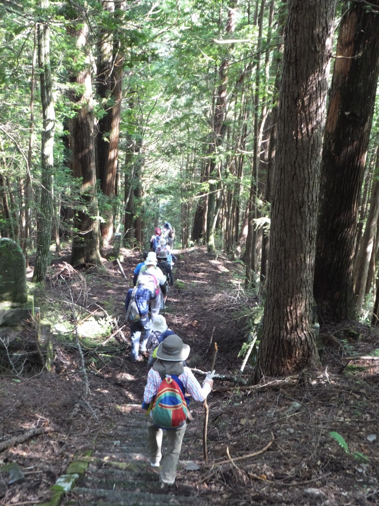 DSCF4989 Hiking Kiso Valley