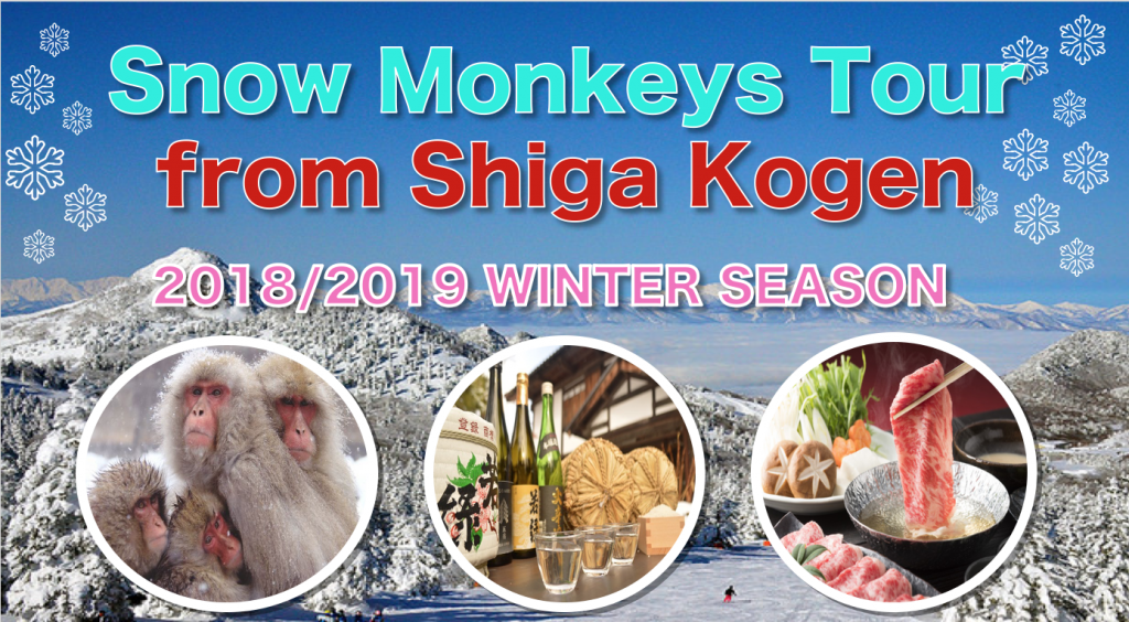 Snow monkey tour from Shiga Kogen banner