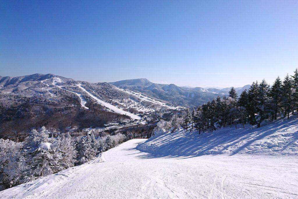 central-area-shiga-kogen-ski-snow