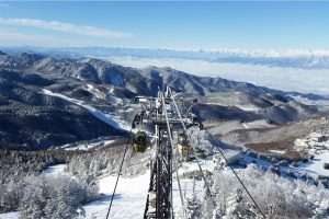 shiga-kogen-winter