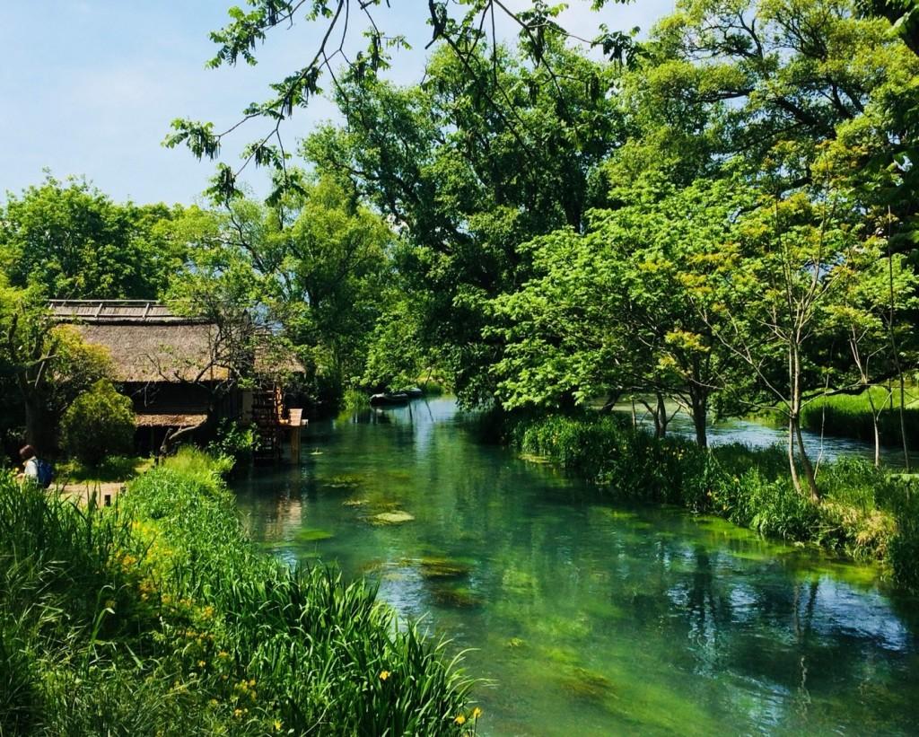 Matsumotodaio farm_181015_0028