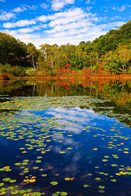 Shiga Kogen Autumn 3