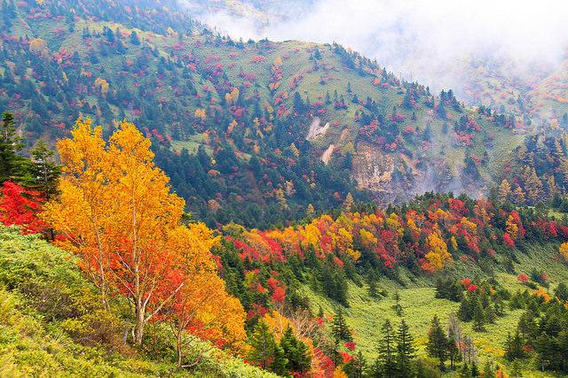 Shiga kogen Autumn 2
