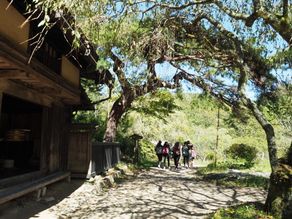 nakasendo-trail