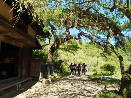 Follow the Nakasendo & Discover the Heart of Japan