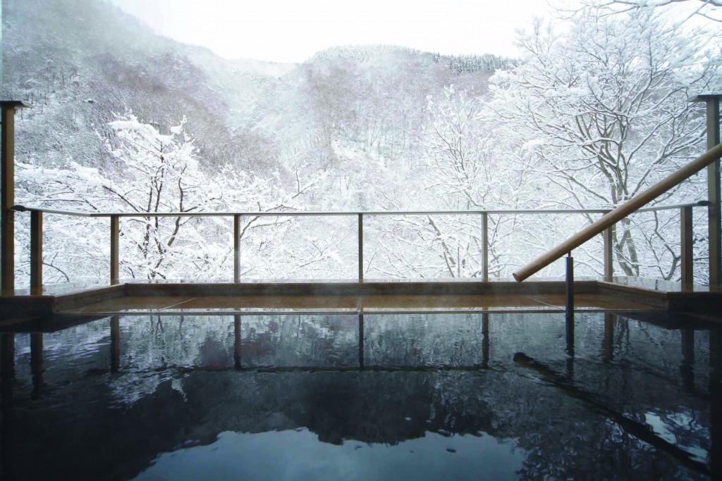Fujiiso winter