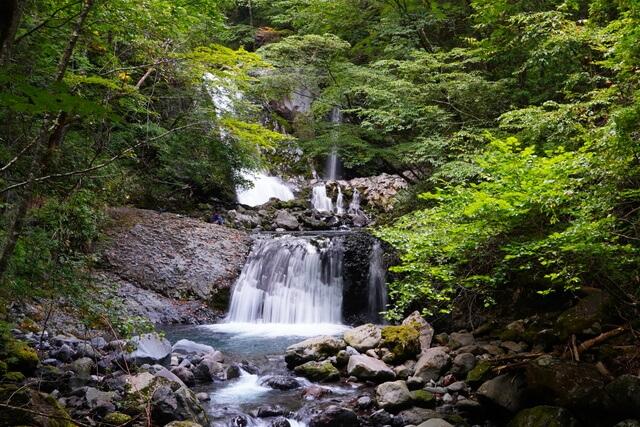 kiso-ontake-aburagi-forest