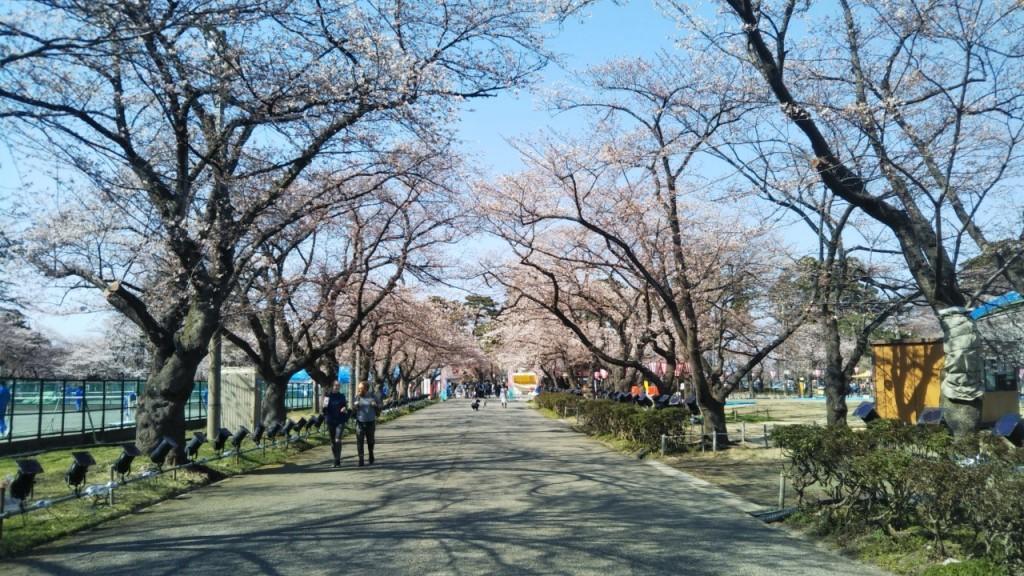 takato April 5th 2019