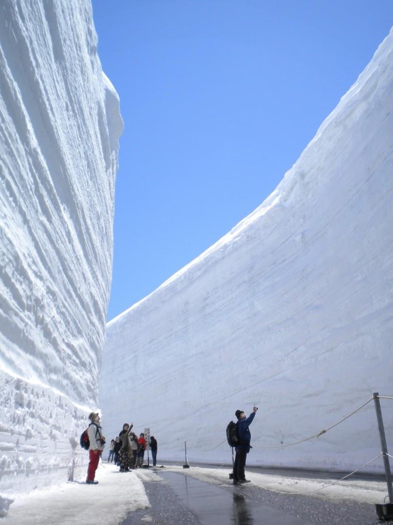 tateyama-kurobe-snow-walls