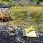 wasabi-picking
