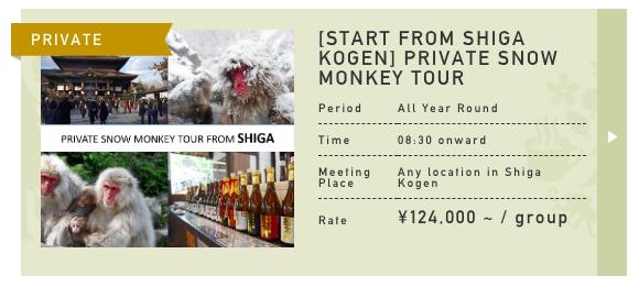 snow-monkey-private-tour-from-shiga-kogen