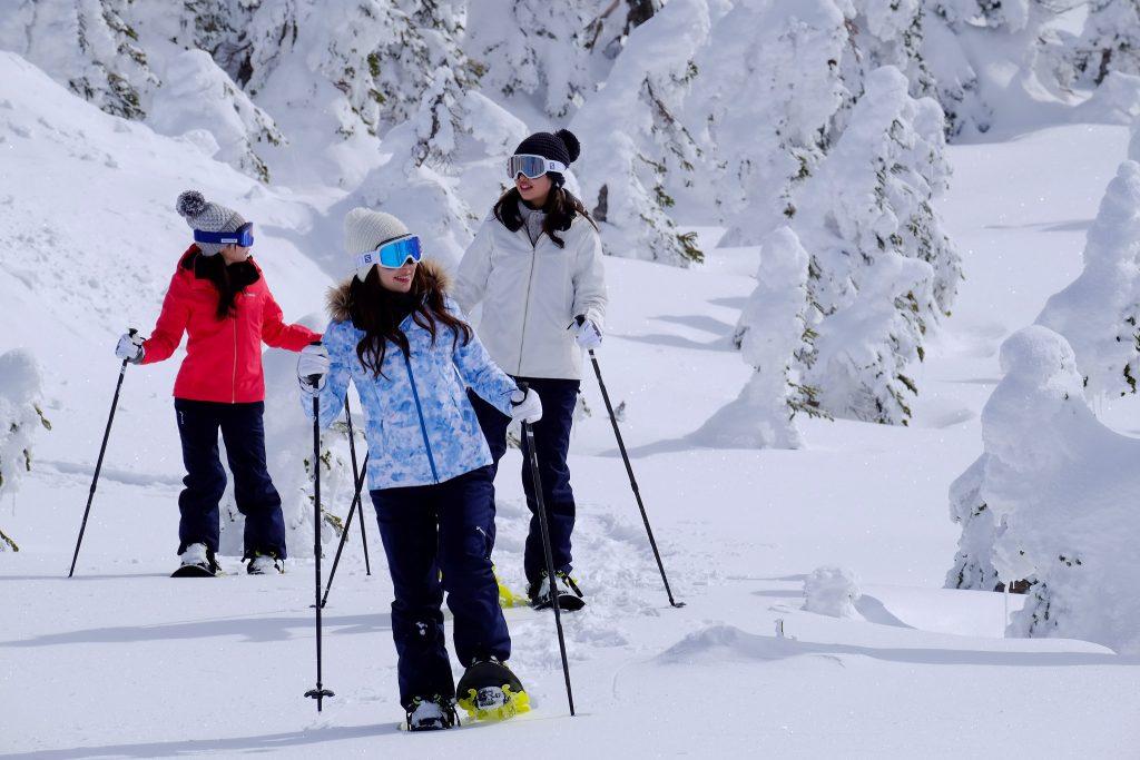 winter-snowshoe-walking