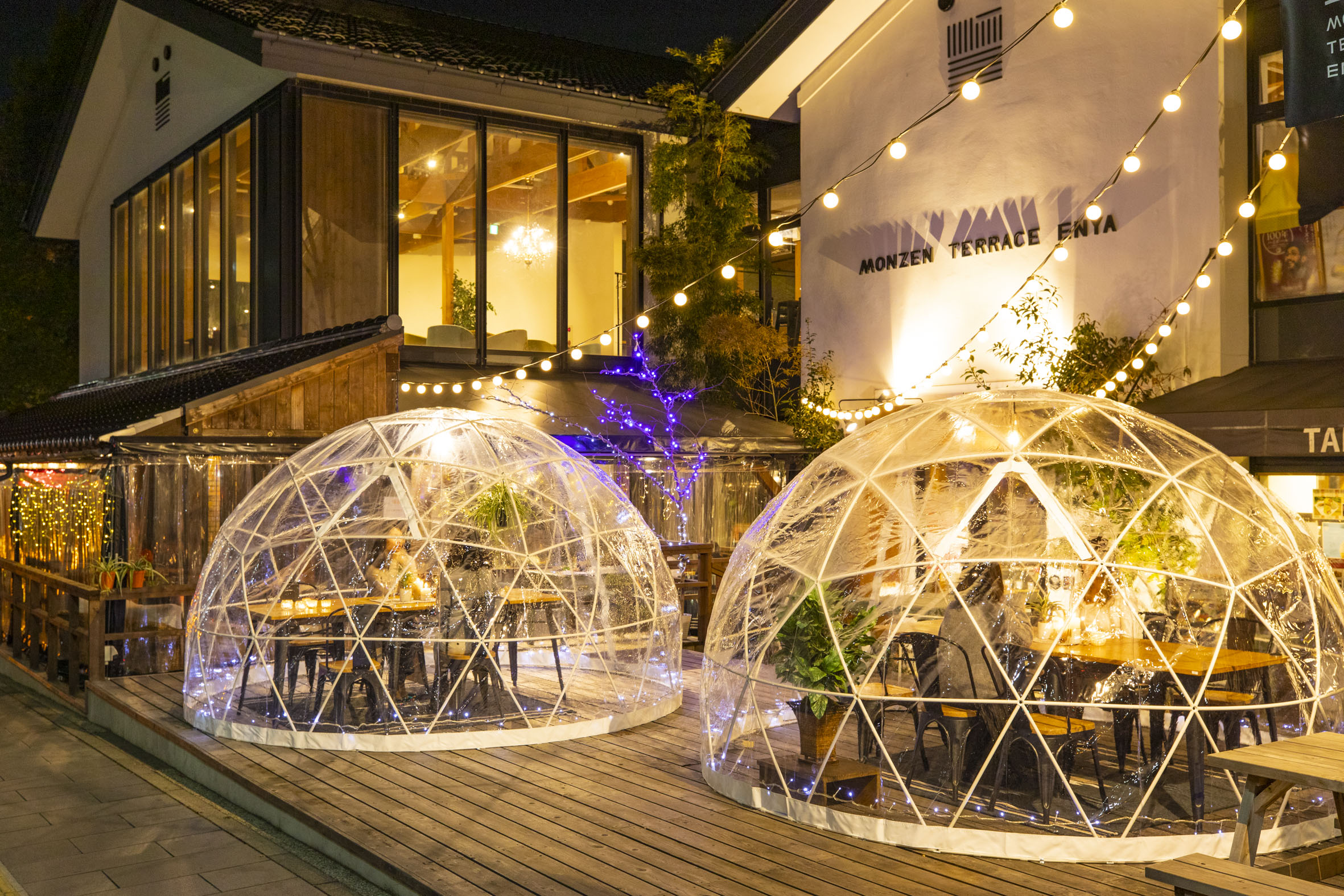 Stay warm in winter with Enya's Winter Illumination Dinner Course