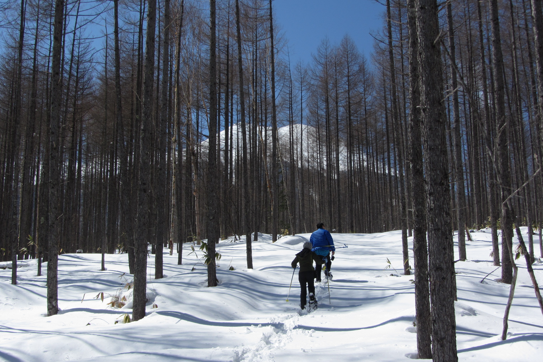 Kaida Plateau