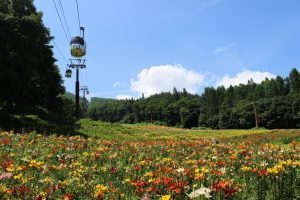 hakuba-green-season