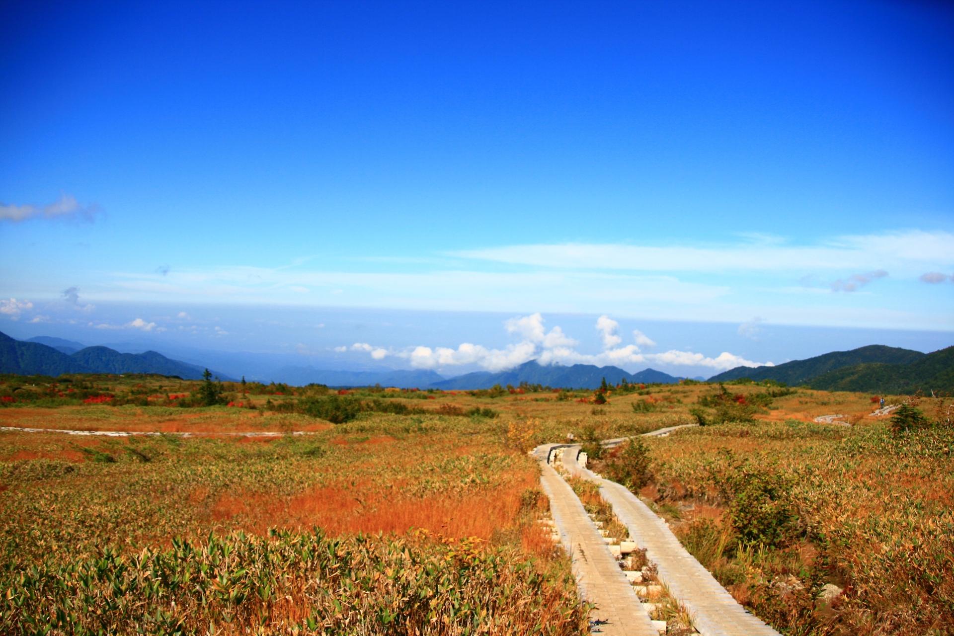 tateyama-kurobe-alpine-route-autumn