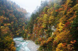 kurobe-gorge