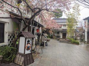 patio-daimon