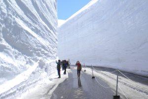 tateyama-kurobe-alpine-route-snow-walls