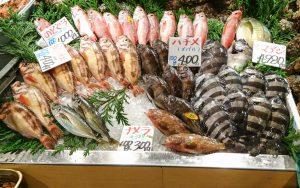 toyama-seafood