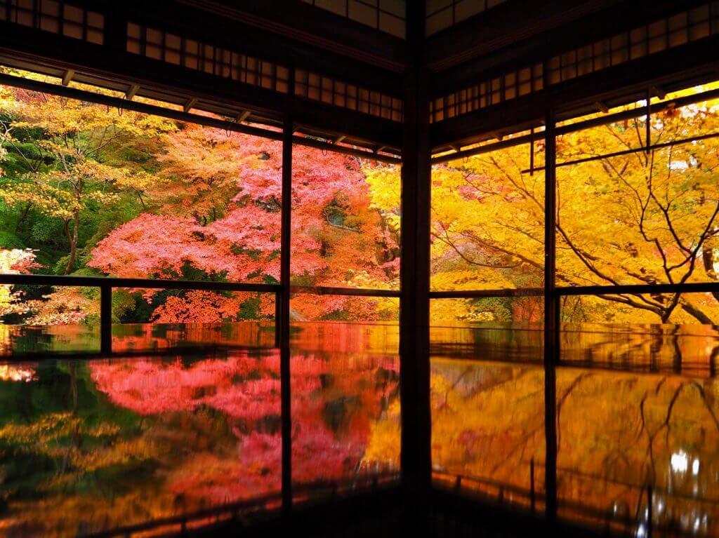 kyoto-autumn-leaves-koyo