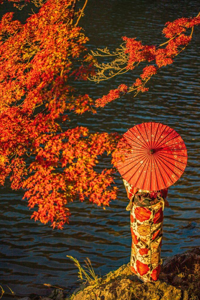 kyoto-autumn-koyo