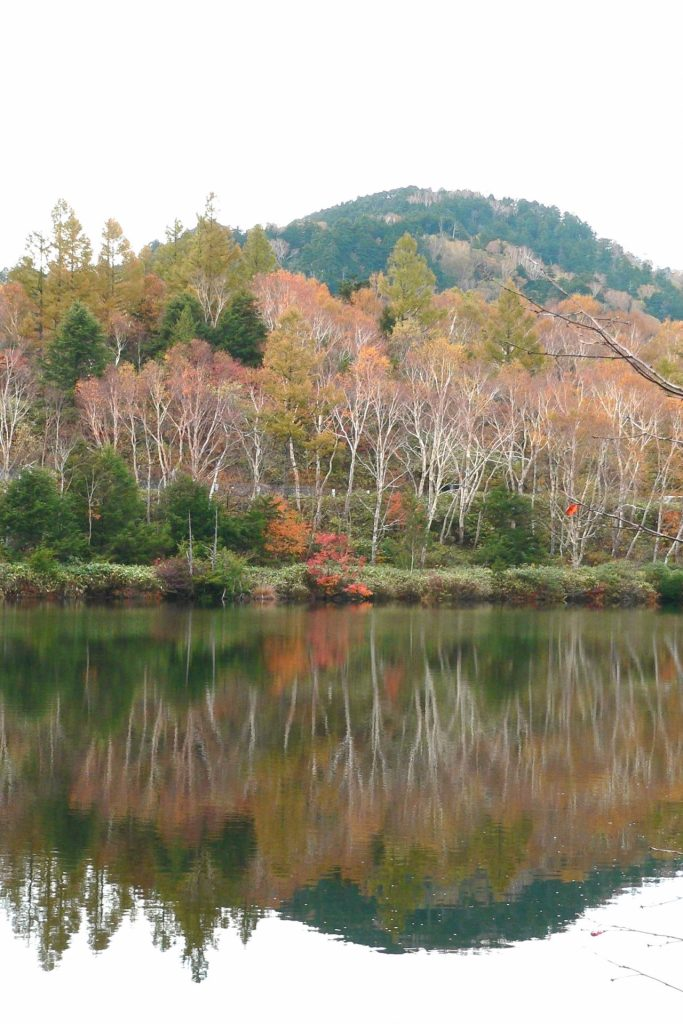 shiga-kogen-hiking-autumn