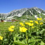 25 Things to Do in & Around the Tateyama-Kurobe Alpine Route