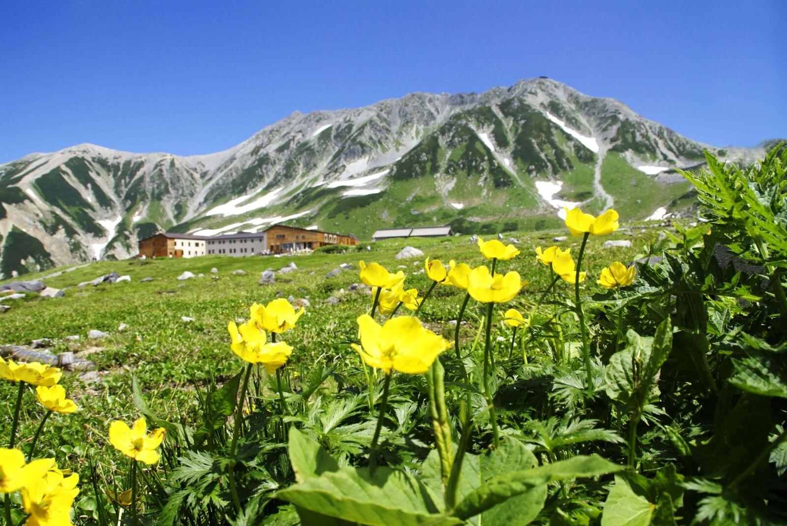 25 Things to Do in & Around the Tateyama-Kurobe Alpine Route