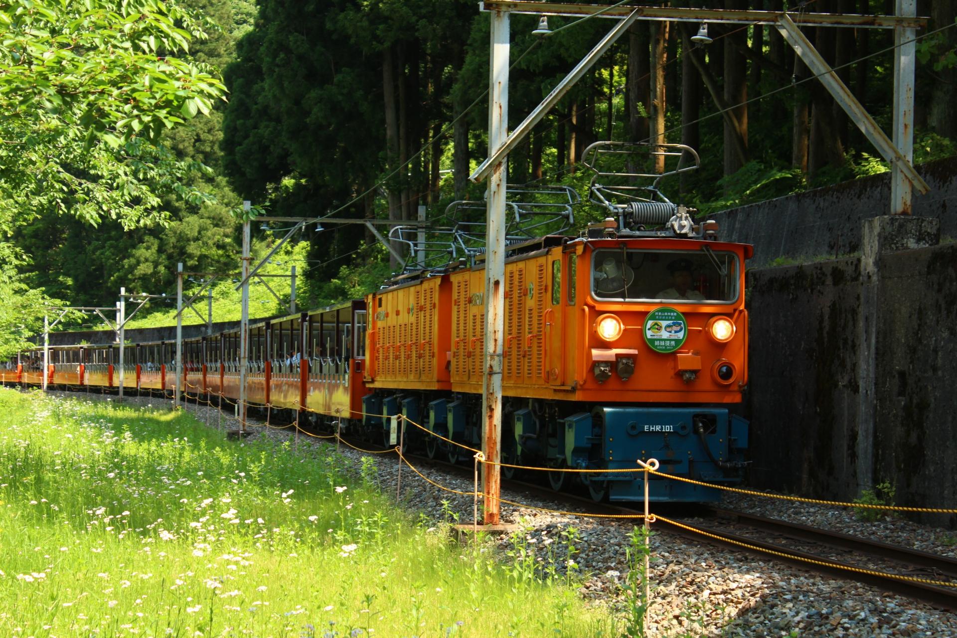 日本最美的电车线路之一。