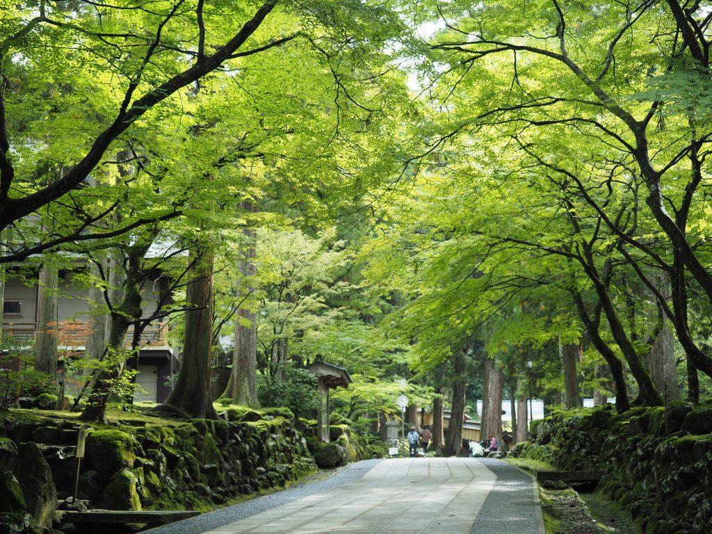fukui-eiheiji-temple