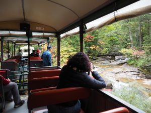 Akasawa-Natural-Recreational-Forest-Kiso