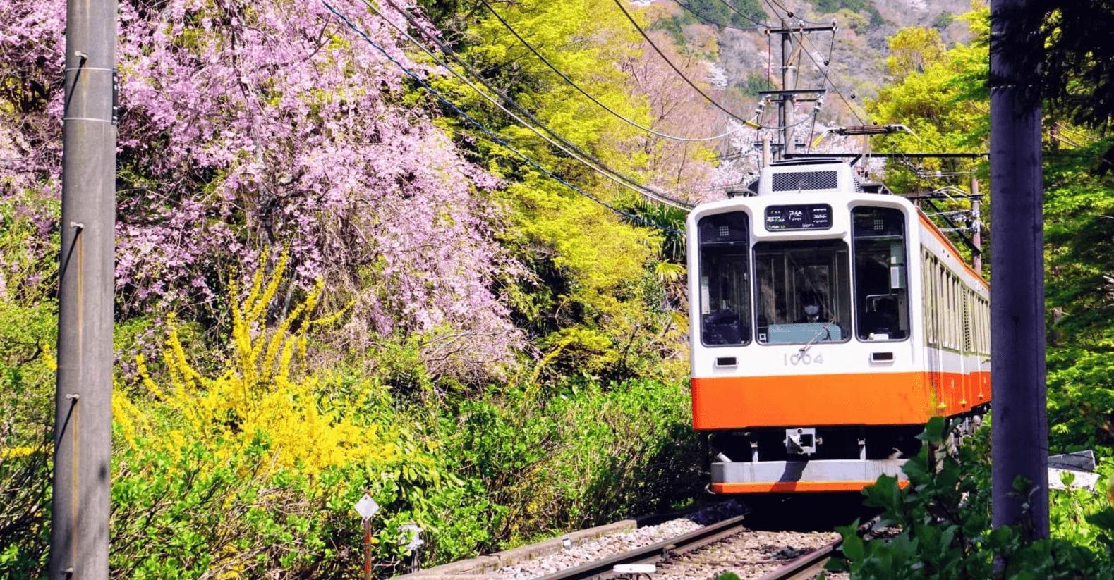 hakone-tozan-railway-banner-edit