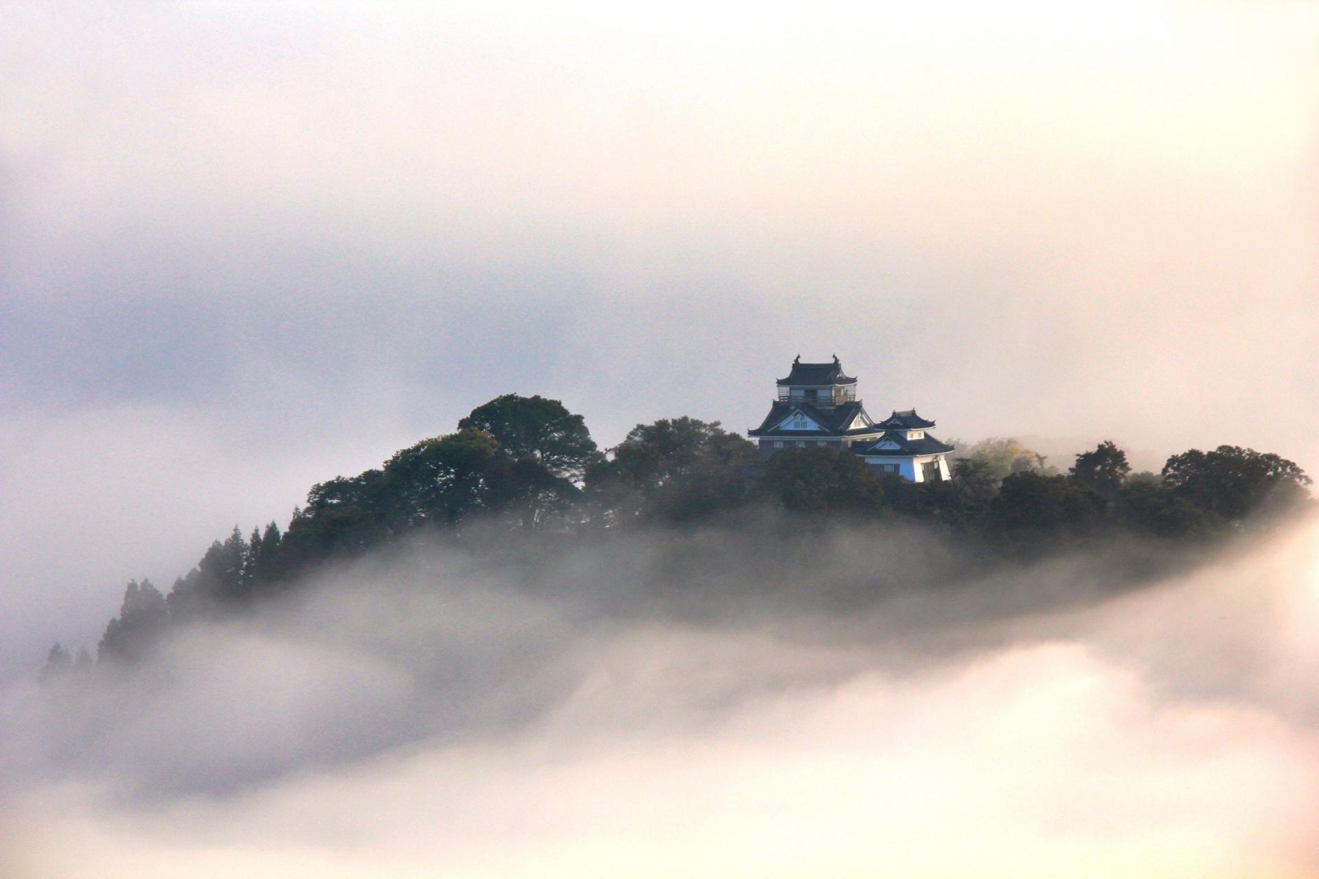 echizen-ono-castle-fukui