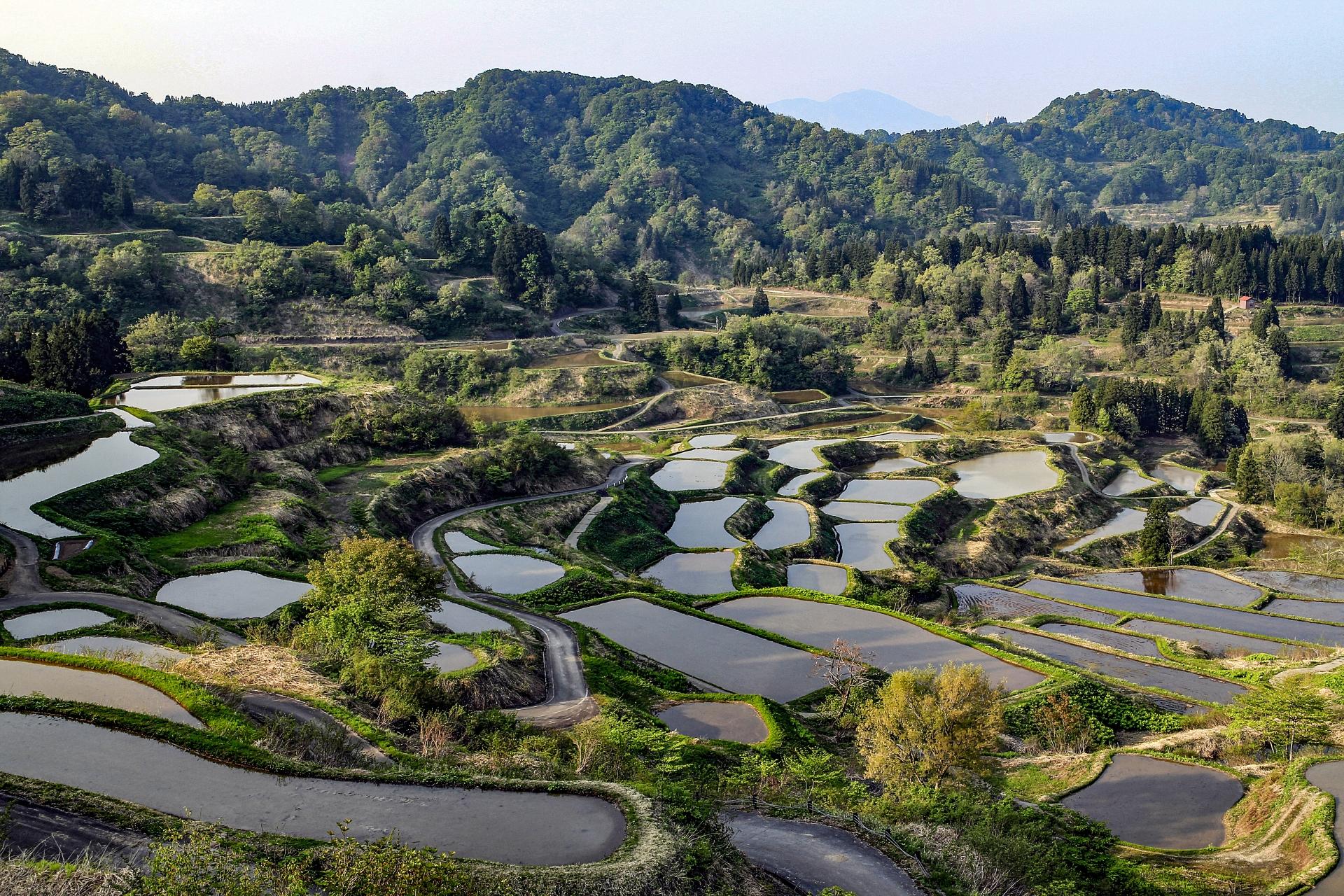 hoshitoge-rice-terraces-niigata