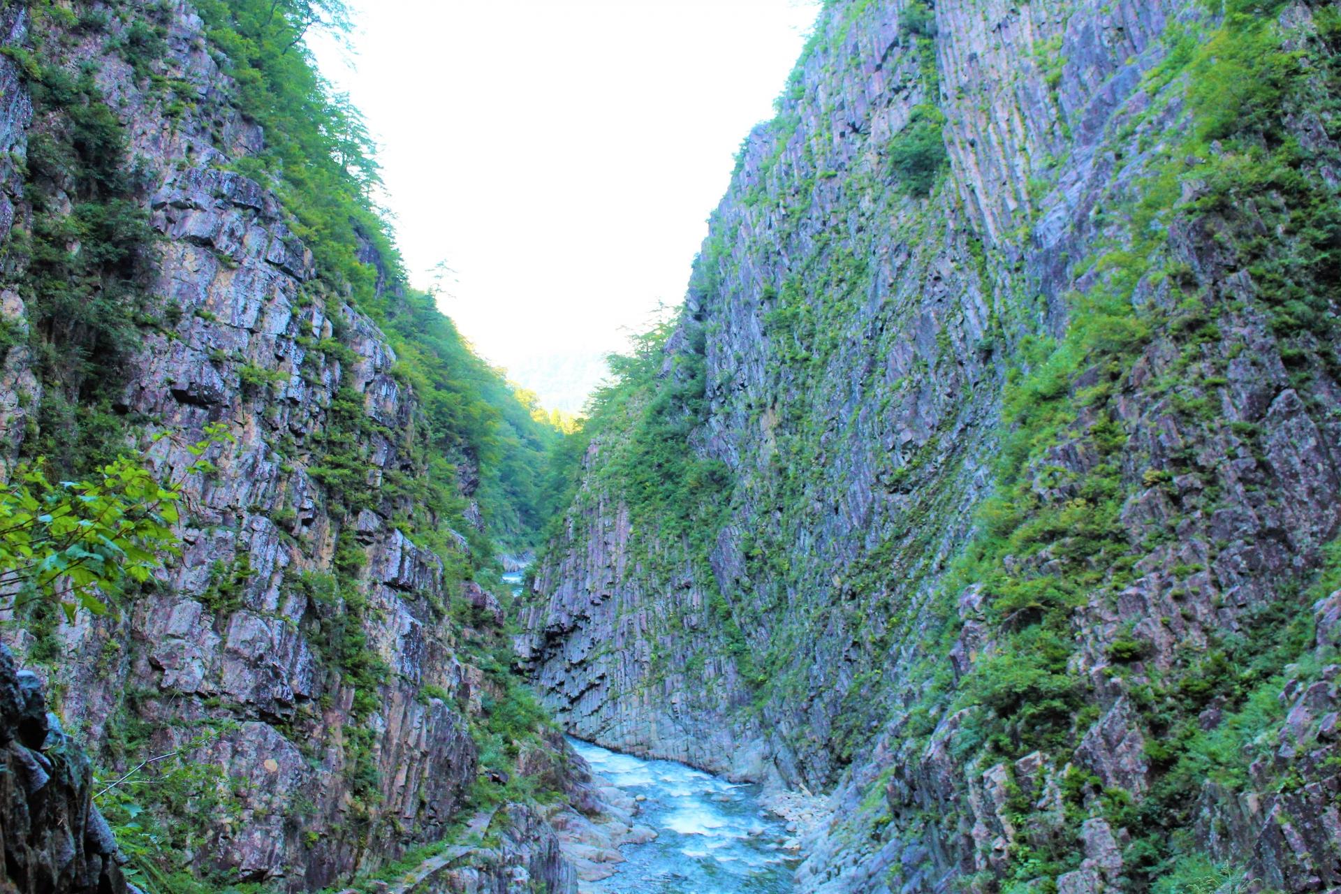 kiyotsu-gorge-niigata